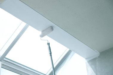 天井塗装の種類